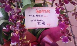 120708_お花2.jpg